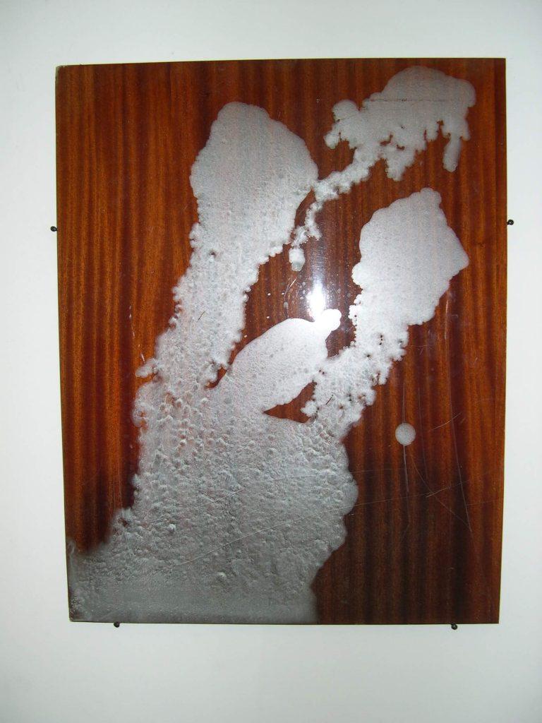 עדו בראל, ציור, 2009