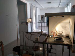 תראי - משה קופפרמן ונעה רז מלמד - חלל התערוכה