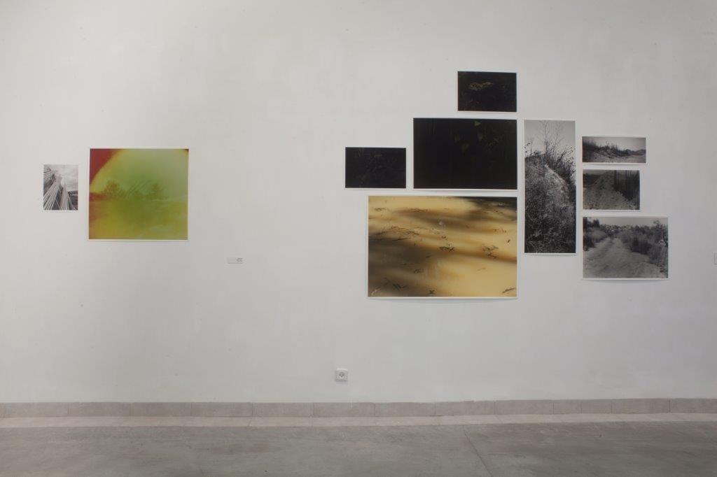 דו.שיח - חלל התערוכה